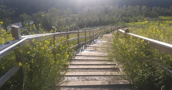 Riverdale Stairs Thumbnail